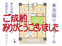 ロイヤル津島V <304号室>