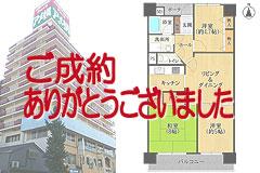 ネオハイツ大須(第2アメ横ビル)《10階部分》
