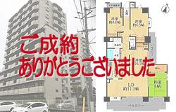 シーアイマンション三郷弐番館 《2階部分》